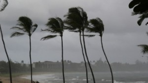 Tips on Protecting Your Property From Hurricane Damage